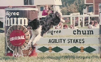 Val Philips George winning the Pedigree Chum