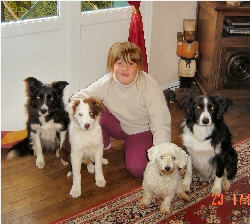 Sam & the dogs