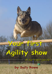 Want to start competing in agility? Compete already but find all the rules confusing?