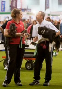 Winning Mini/Maxi Pairs Discover Dogs with dad Alan Bray - photo: Yulia Titovets