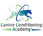 Bridging the gap in canine therapy & training